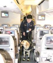 缉毒犬首次登机查毒