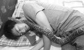 26岁小伙痴迷饲养爬行动物 常年与蟒蛇同床共眠