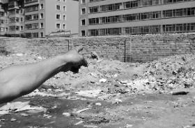 妇女用砖拍死7岁侄儿报复婆婆(图)