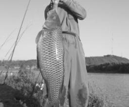 牡丹江73岁老汉江中钓起28斤大鲤鱼(图)