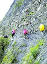 49名游客四川山区大逃生 头顶雷电身后泥石流