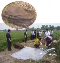河南男子在KTV露富被抢劫遭杀害分尸