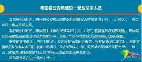湖南13岁留守儿童砍杀七旬老人 拿走700元被抓