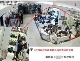 女子连偷9个包包被抓后称看到这个牌子忍不住